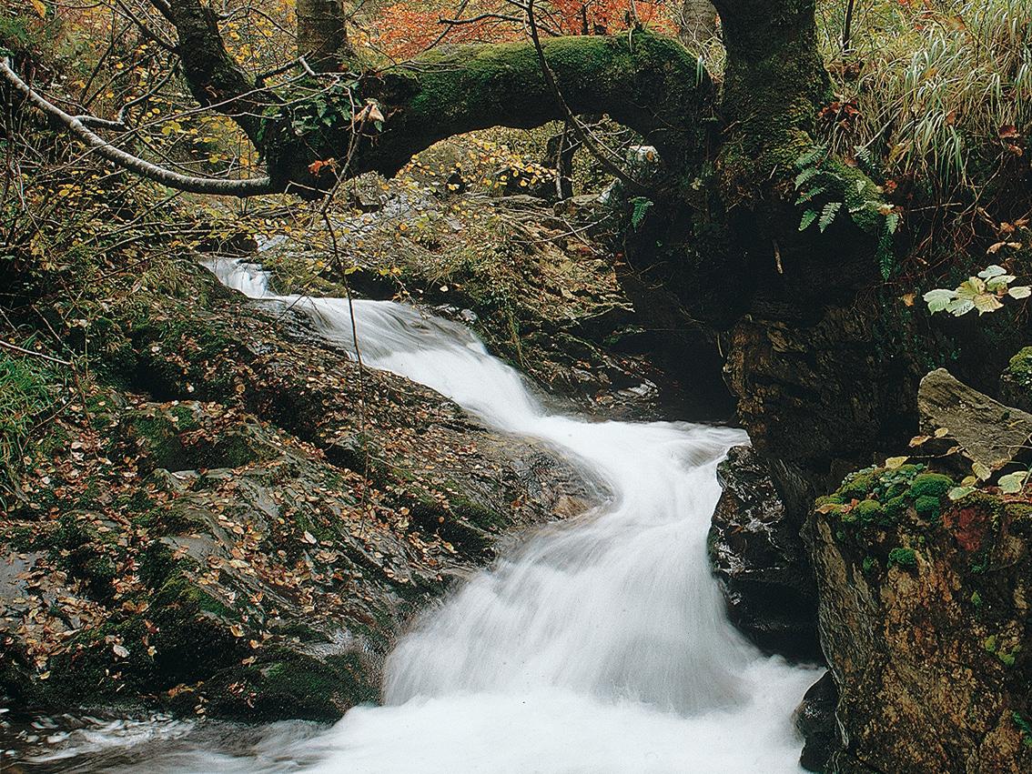 Abastecimiento de Agua y Saneamiento en el Principado de Asturias