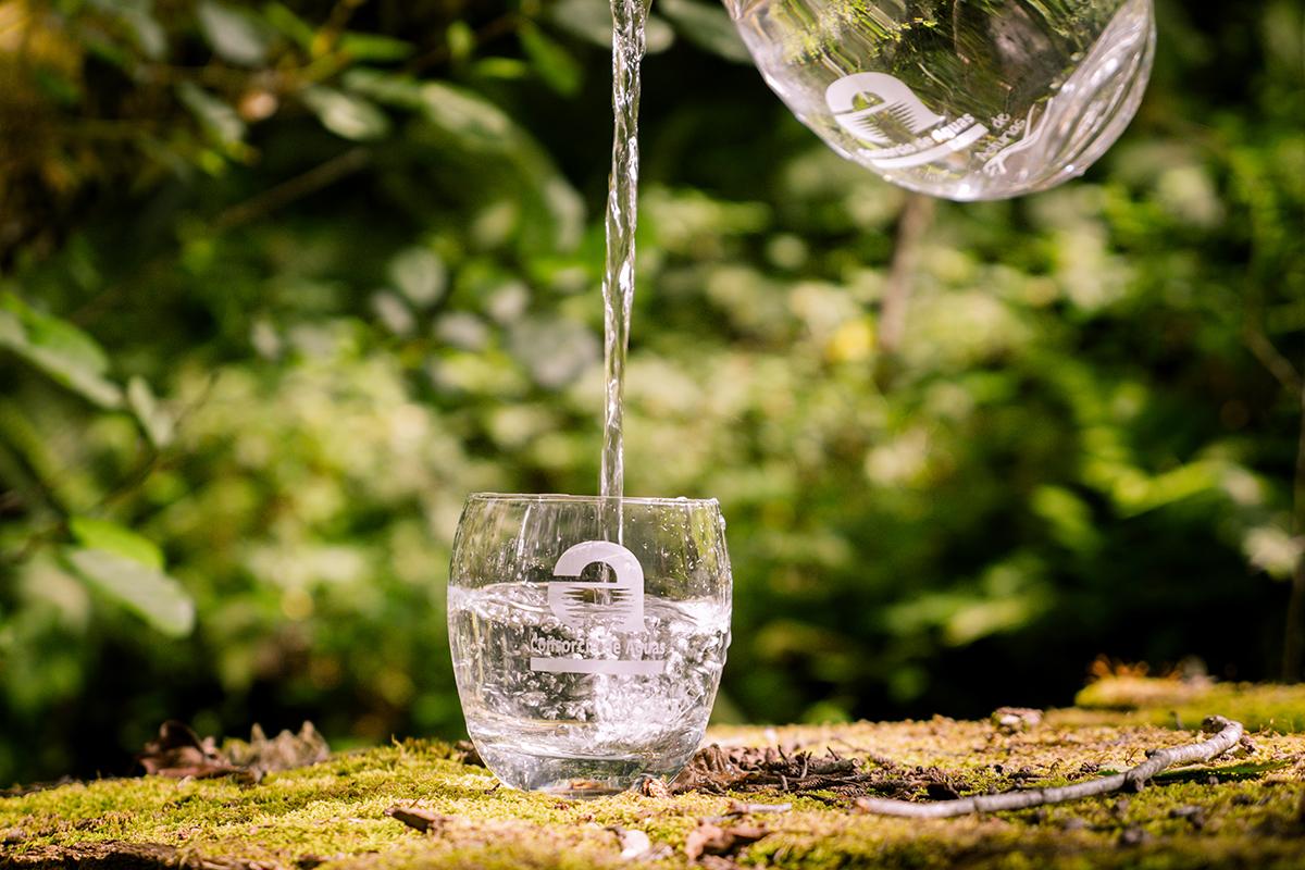 Consorcio Aguas Asturias Desarrollo